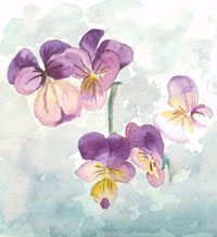 """African Violets"" by Jeralyn Terry"